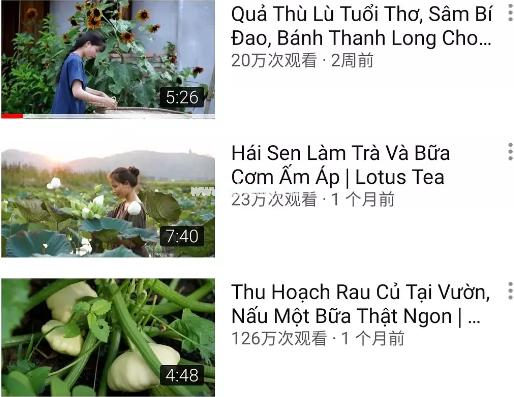 越南李子柒事件 作品没有灵魂永远超越不了原版的